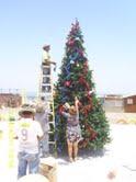 Arboles de Navidad para las caletas pesqueras del litoral iququeño