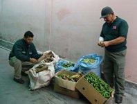 160 kilos de productos agrícolas adquiridos en Bolivia decomisan SAG y Carabineros