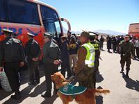 Carabineros  escoltó caravana de 14 buses con bolivianos indultados