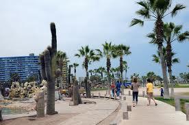 Playas del litoral iquiqueño y zonas silvestres en guía de turismo orientada a los jóvenes