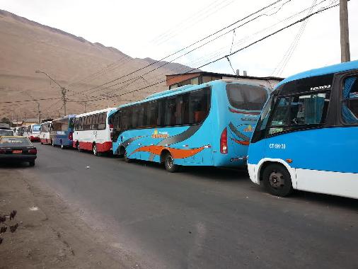 Comienza entrega de permisos del transporte público para La Fiesta de Tarapacá