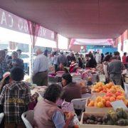 Variada oferta de productos en novena versión del Mercado Campesino