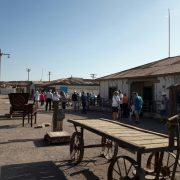 Salitreras destino predilecto de turistas que llegan a Iquique en cruceros internacionales