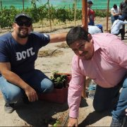 Vino del Desierto que produce la UNAP, en Estación Experimental de Canchones, es elegidoel proyecto estrella de la región de Tarapacá